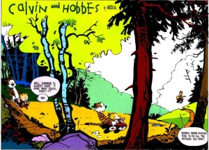 Sometimes Calvin and Hobbs know exactly how to say it. Picture taken from http://all-that-is-interesting.com/calvin-hobbes-say-farewell-to-summer